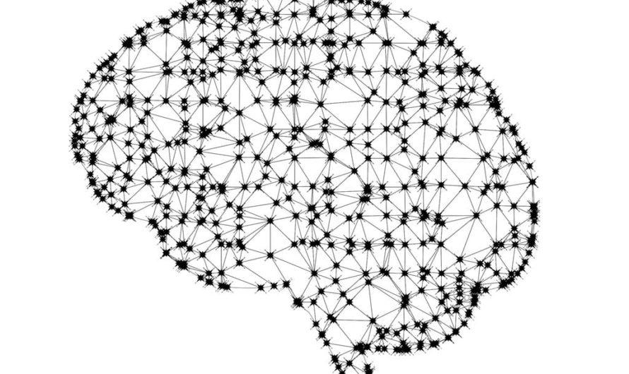 Intelligence artificielle, quelles applications au quotidien ?